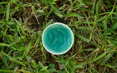 softee-herbal-gro-no-lid-1024x643