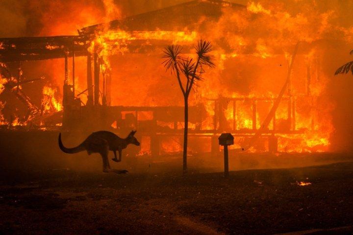 2019-2020 Australian BushfireCrisis